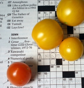 Tumbling Tom and Gold Nugget Cherry Tomatoes