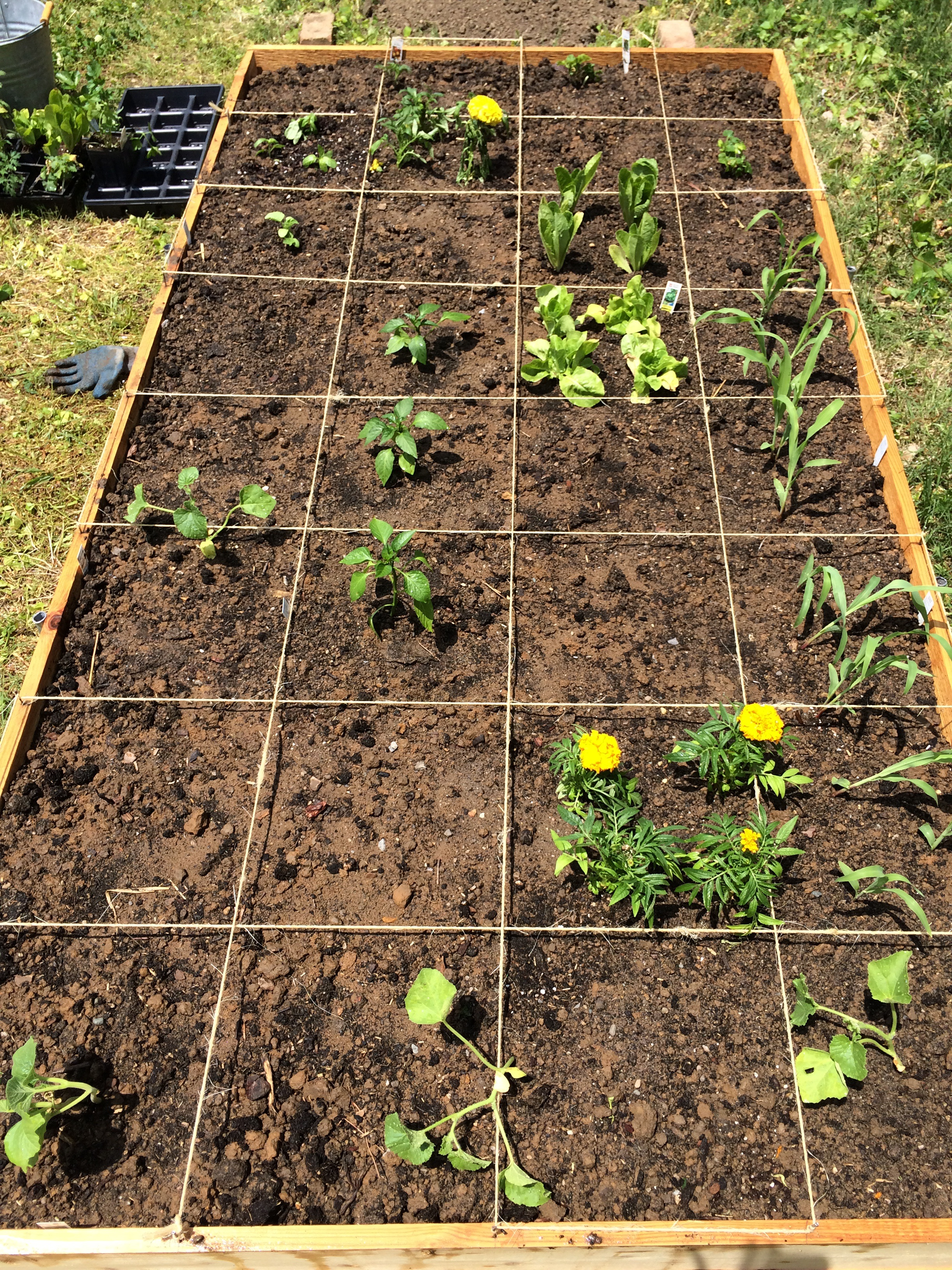 Square Foot Garden Plans Plants On Deck